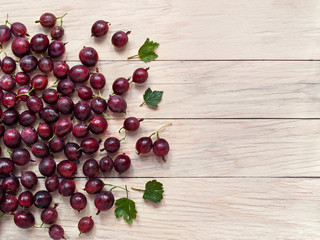 Fresh berries of gooseberry are scattered on the background of boards