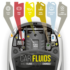 Technical fluids of the car