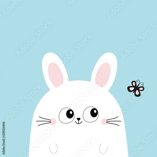 White Bunny Rabbit Looking At Butterfly Funny Head Face Big Eyes