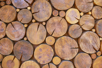 Stacked Logs Texture, Natural Background close-up photo