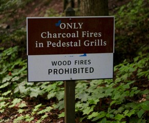 A brown and white sign in the forest on a close up view.