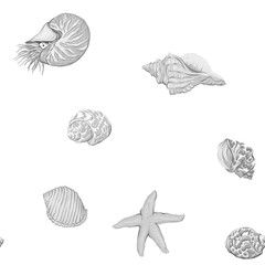 Sea world seamless pattern, background with fish, corals and shells on white background. Stock vector illustration. In monochrome gray colors