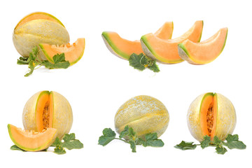collection of 5 cantaloupe melon images with leaves isolated on a white background