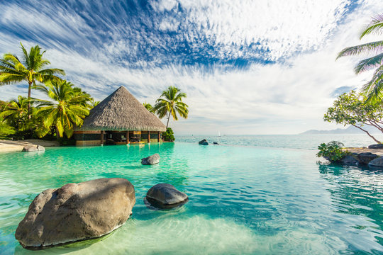 Infinity pool with palm tree rocks, Tahiti, French Polynesia