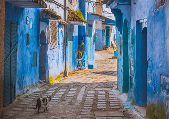 Amazing street view of blue city Chefchaouen. Location: Chefchaouen, Morocco