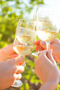 Hands with white wine toasting in garden picnic. Friends Happiness Enjoying Dinning Eating Concept.