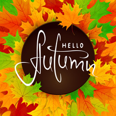 Colorful background with maple leaves and lettering Hello Autumn on black banner
