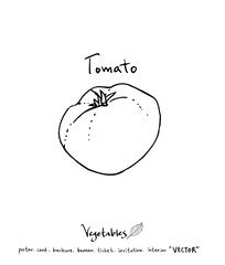 농산물 일러스트 / 손으로 그린 과일과 채소 그림