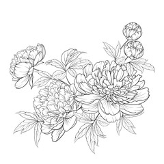 Spring flowers bouquet of contour style flower garland. Label with peony flowers. Vector illustration.