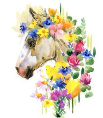 cute foal watercolor illustration. little horse in the summer flowers