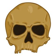 Vector Cartoon Illustration - Old Brown Human Skull