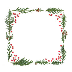 Cedar cypress leyland leaf sprigs and holly berries forming a square minimalist abstract frame on white background.