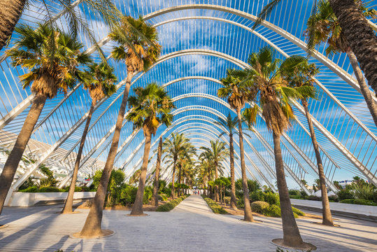 Umbracle modern palm tree park in Valencia, Spain.