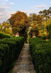 Stone path between the trees in a village near Targoviste city.