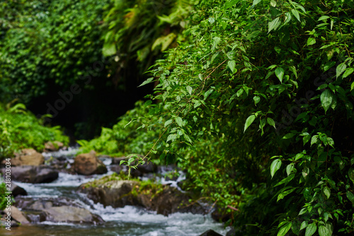 River Water Rocks In Forest River Landscape With Mountains