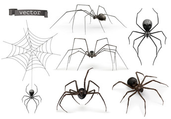 Realistic spider. Halloween 3d vector icon set