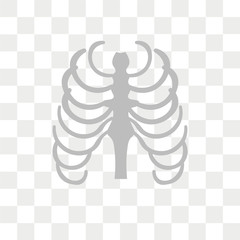 Sternum vector icon isolated on transparent background, Sternum logo design