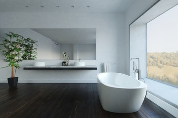 Contemporary bathroom with plant and bathtub