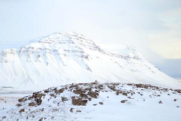 Winter mountain under the snow