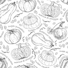 Pattern with different pumpkins. Hand drawn graphic. Vintage style.