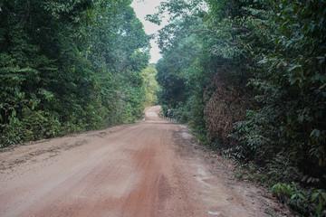 Dusty path