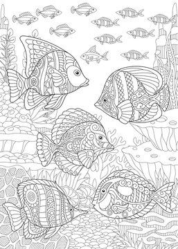 Coloring Page. Coloring Book. Colouring picture with tropical fishes.