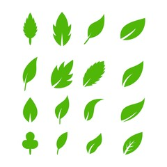 Leaf icons vector design leaves green concept illustration isolated nature premium