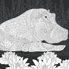 Hippo coloring book page