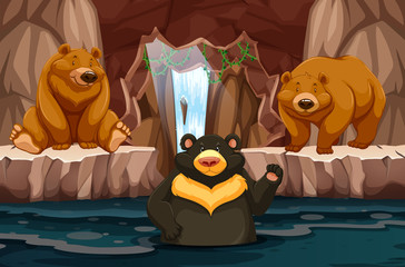 Wild bears in underground cavern with water