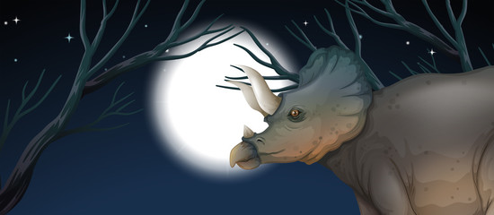 Triceratops in full moon night