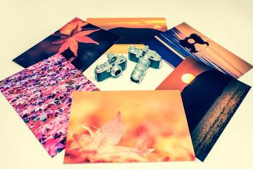 秋の写真 ネガフィルム