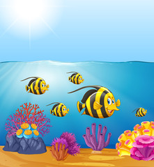 Butterflyfish under the ocean