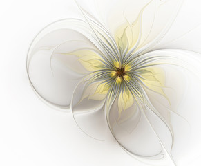 Fractal exotic flower on a white background