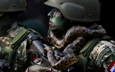 A member of Paraguayan Army's Special Forces Cavalry with a snake around his neck marches in front of Paraguay's President Mario Abdo Benitez (not pictured) during a military parade in Asuncion