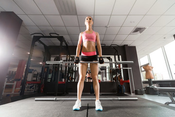 sexy woman with a ponytale wearing pink and black professional sportswear squatting with an iron barbell at the highly equipped gym. Strength and motivation concept