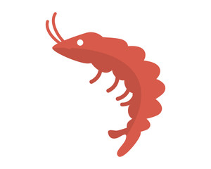Shrimp image vector icon