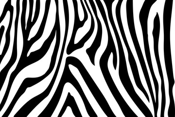 Zebra Stripes Pattern. Zebra print, animal skin, tiger stripes, abstract pattern, line background, fabric. Amazing hand drawn vector illustration. Poster, banner. Black and white artwork, monochrom