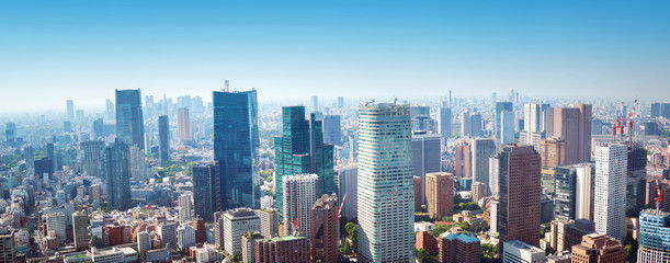 Canvas Print - panoramic view to the Tokyo, Japan from air. Cityscape with many modern business buildings
