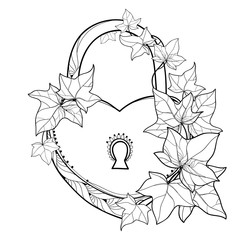 Vector padlock heart with outline bunch Ivy or Hedera vines. Ornate leaves of Ivy in black isolated on white background. Perennial climbing plant in contour for romantic design or coloring book.