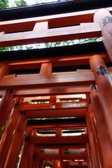日本 京都 赤い鳥居 伏見稲荷大社 Japan Kyoto Red Torii Fushimi Inari Shrine