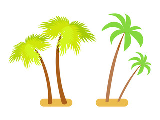 Palms Collection Green Set Vector Illustration