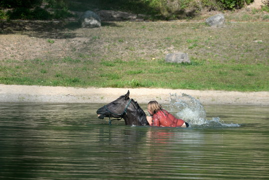 a ride through the water. Woman and black horse swimming in a lake