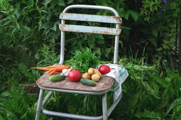 Fresh vegetables (potato, carrot, tomato) on vintage chair on farm. Summer food photo.