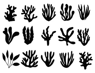 seaweed silhouette isolated. marine plants on a white background set