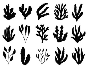 seaweed silhouette isolated. Marine plants on white background. set of objects