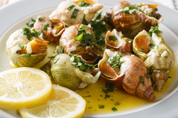 Delicatessen food: whelk, sea snails bulot  with garlic sauce, parsley and lemon close-up. horizontal