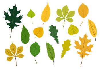 葉のイラストセット