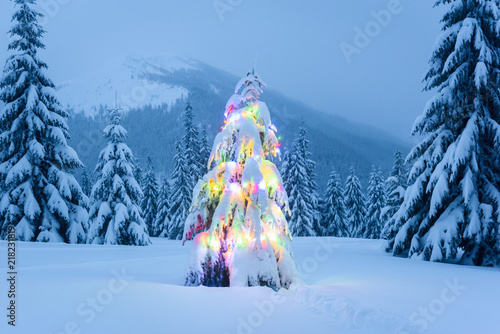 Holiday landscape with christmas tree snow and lights in winter