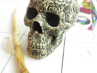 rose skull healing magic future