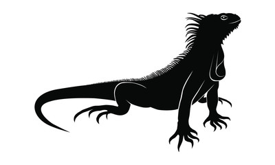 Iguana graphic icon. Iguana black sign isolated on white background. Vector illustration